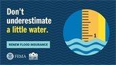 Renew Flood Insurance