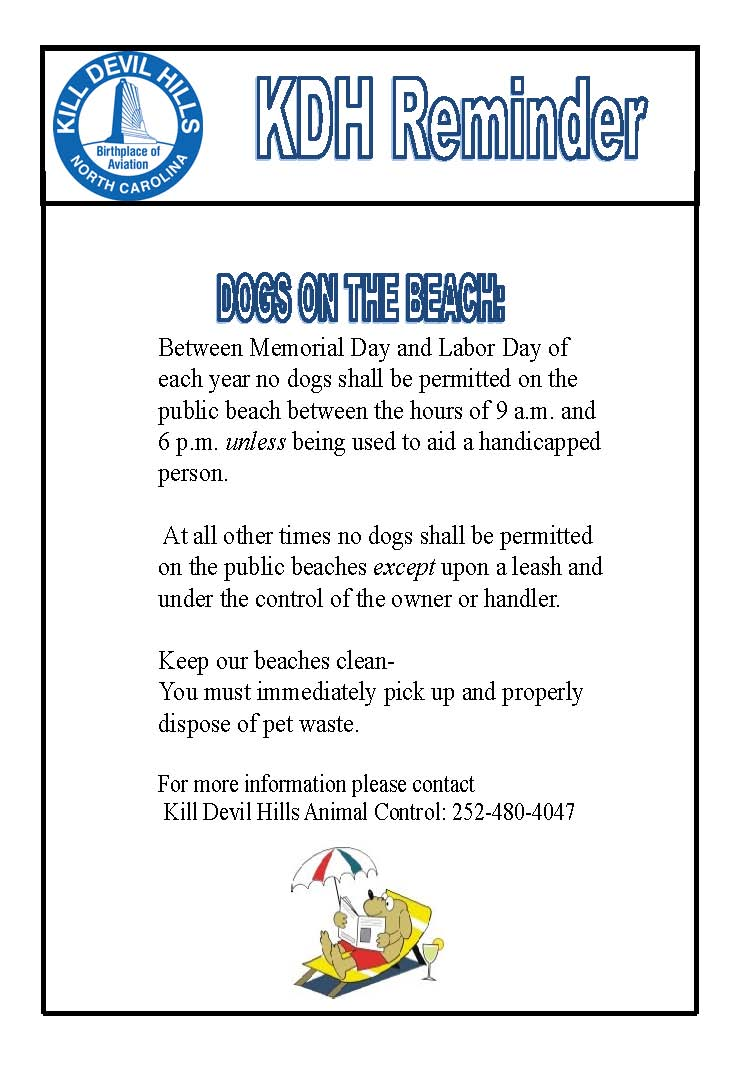 Dogs on the beach 2017